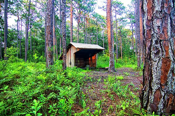 fop lodge 7 by Carolina Footprints