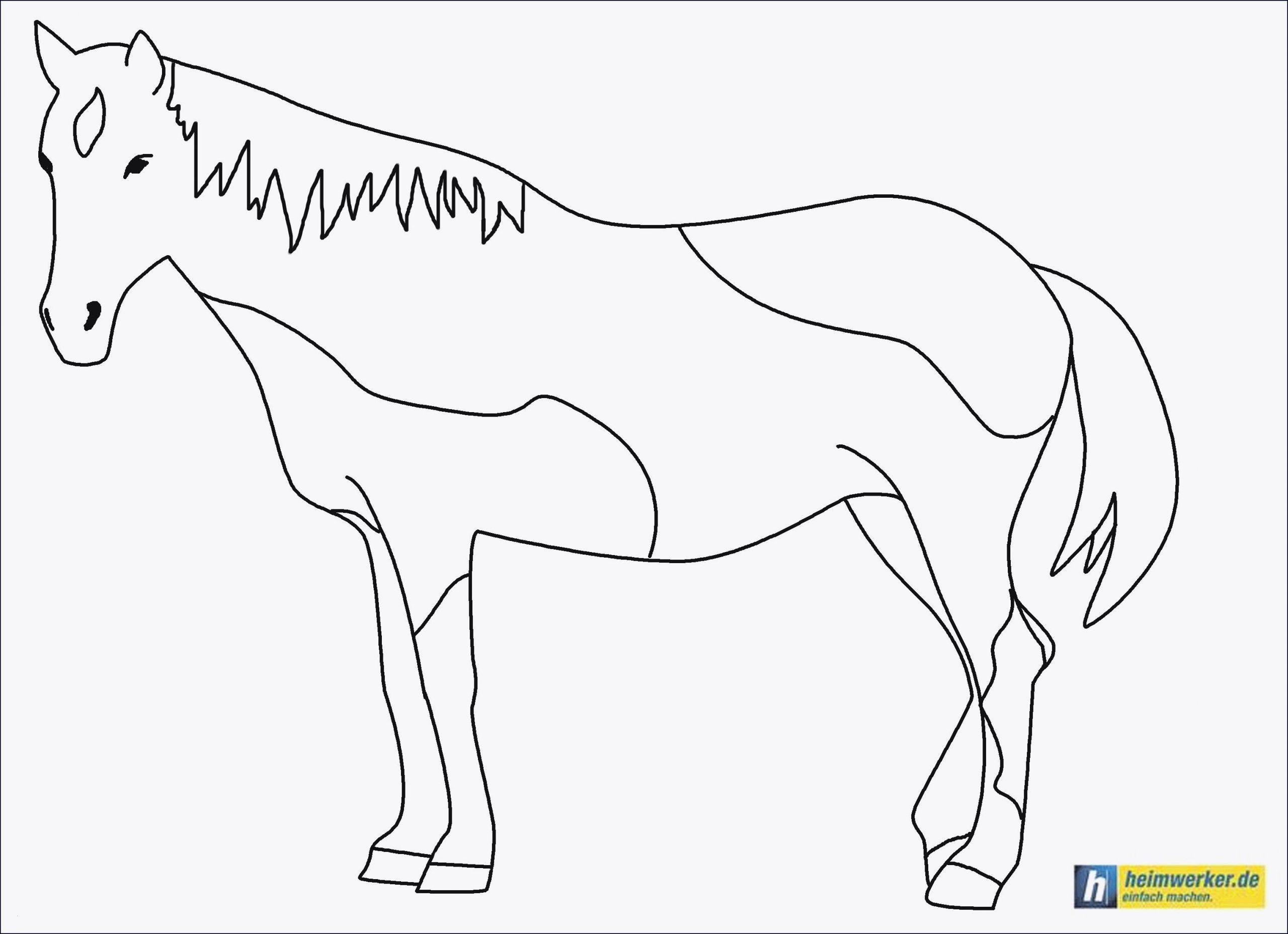 pferde ausmalbilder klein - tiffanylovesbooks