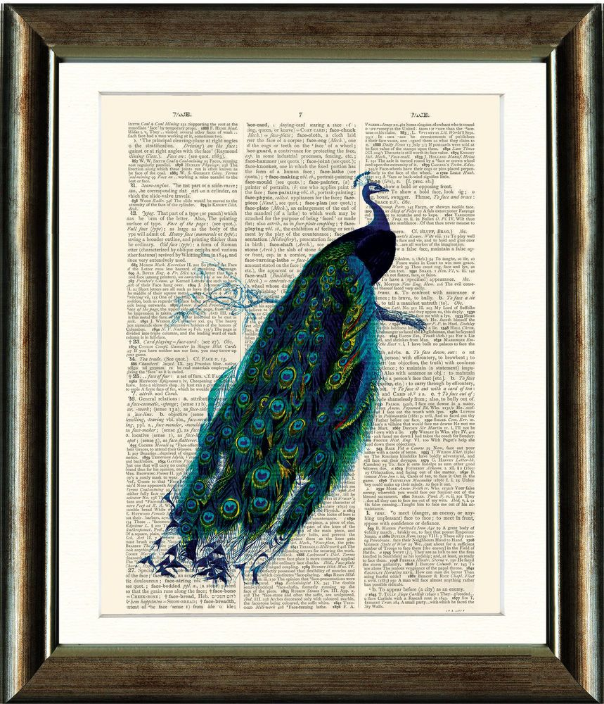 Antique Book page Art Print - Vintage Peacock Print in Art, Artists (Self-Representing), Prints | eBay
