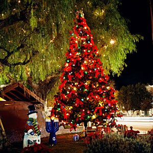 Share Your Favorite Local Holiday Tradition Sierra Madre Holiday Sierra Madre California