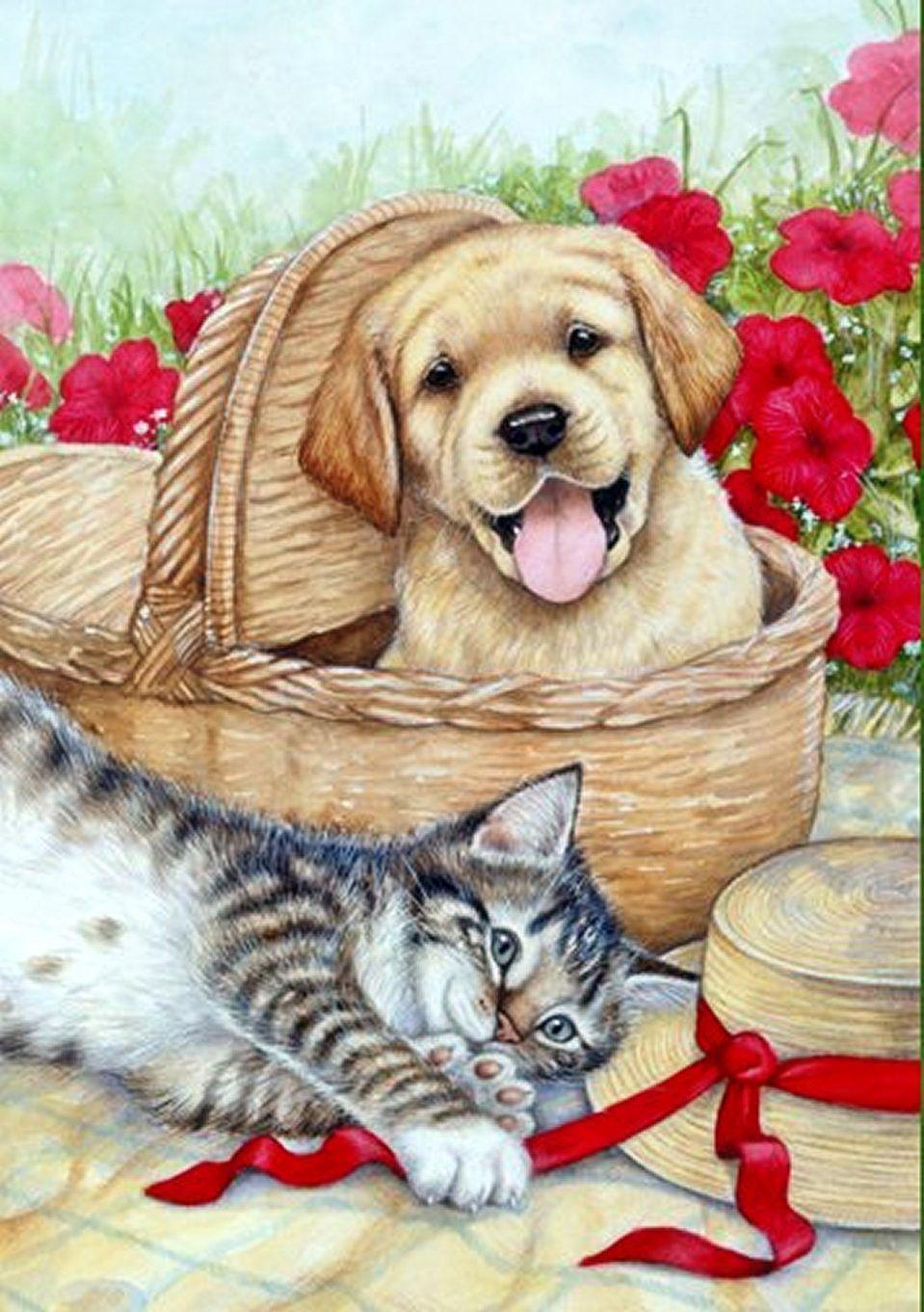 Katzen Und Hundebild Dieren Kleurplaten Hond Tekeningen Dieren Tekenen