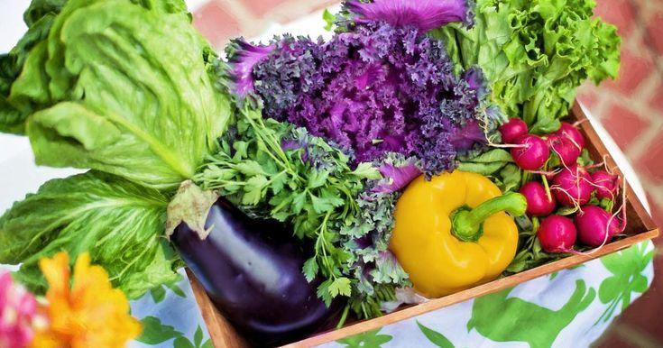 33 kalorienarme Lebensmittel zum Abnehmen  Nahrungsmittel ohne Kalorien 33 kalorienarme Lebensmittel zum Abnehmen  Nahrungsmittel ohne Kalorien