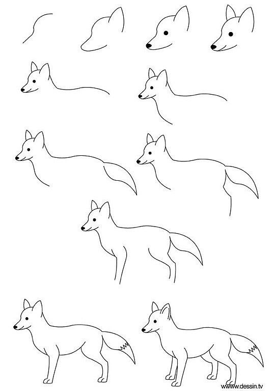 Drawing Fox Learn How To Draw A With Simple Step By Instructions The Drawbot Also Has Plenty Of And Coloring Pages