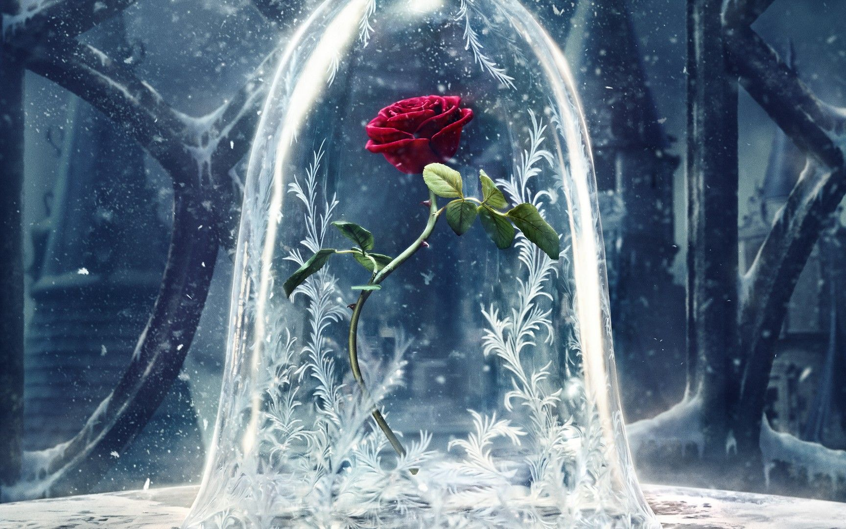 HD Beauty and the Beast wallpaper | Beauty & The Beast | Pinterest
