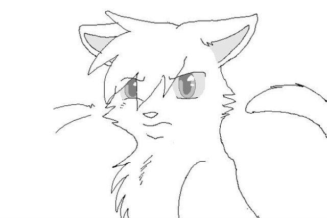 Картинки котов воителей для срисовки