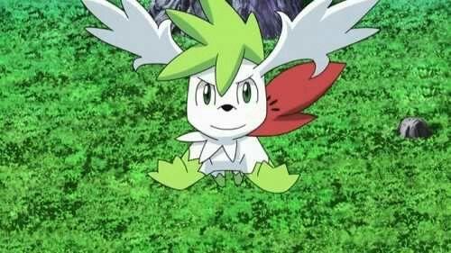 Shaymin-pokemon-wallpaper-20160723181852-500x281