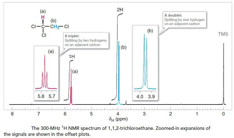 Nuclear Magnetic Resonance Spectroscopy Nmr Spectroscopy An Overview Quimica Organica