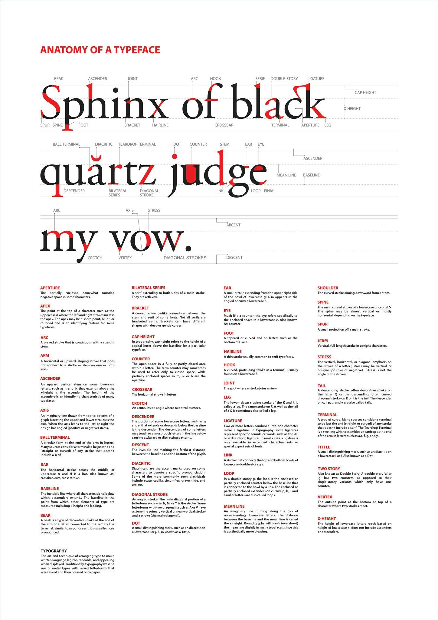 Anatomy Of A Typeface Typography Typography Design And Graphic