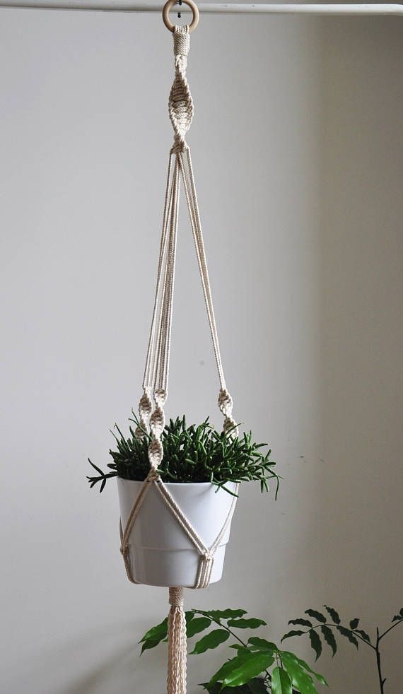 Photo of Hanging planter, macrame rope plant holder, macrame planter, indoor wall planter, cotton wall planter, indoor plant hanger, yanyula macrame