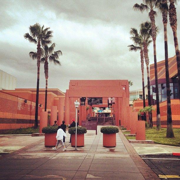 California State University Los Angeles Csula California State California State University