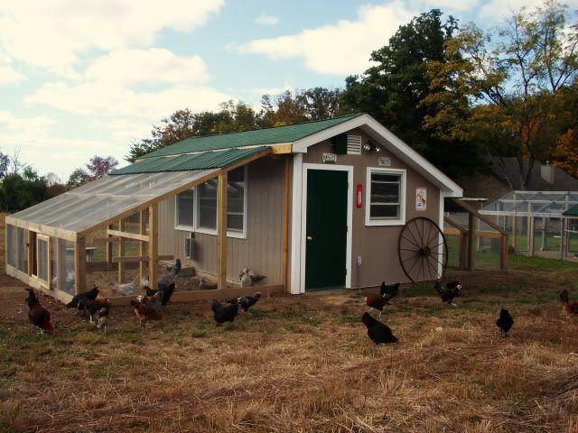 Big Coop Chicken Coop Designs Chickens Backyard Chicken Diy