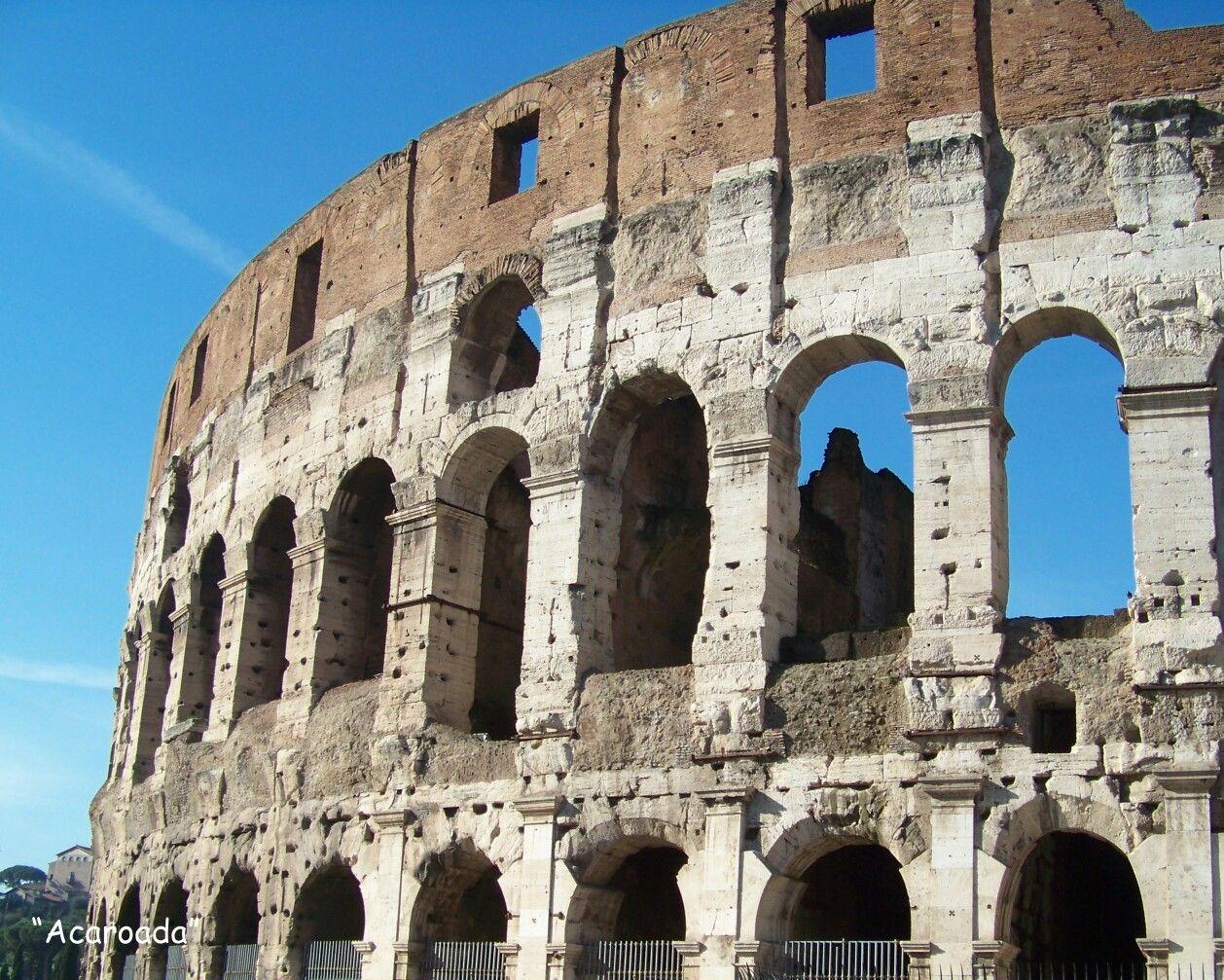 Acaroada: Lateral del Coliseo, Roma (Italy).