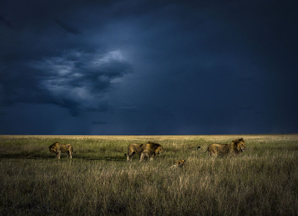 Moments by Chris Fischer on 500px