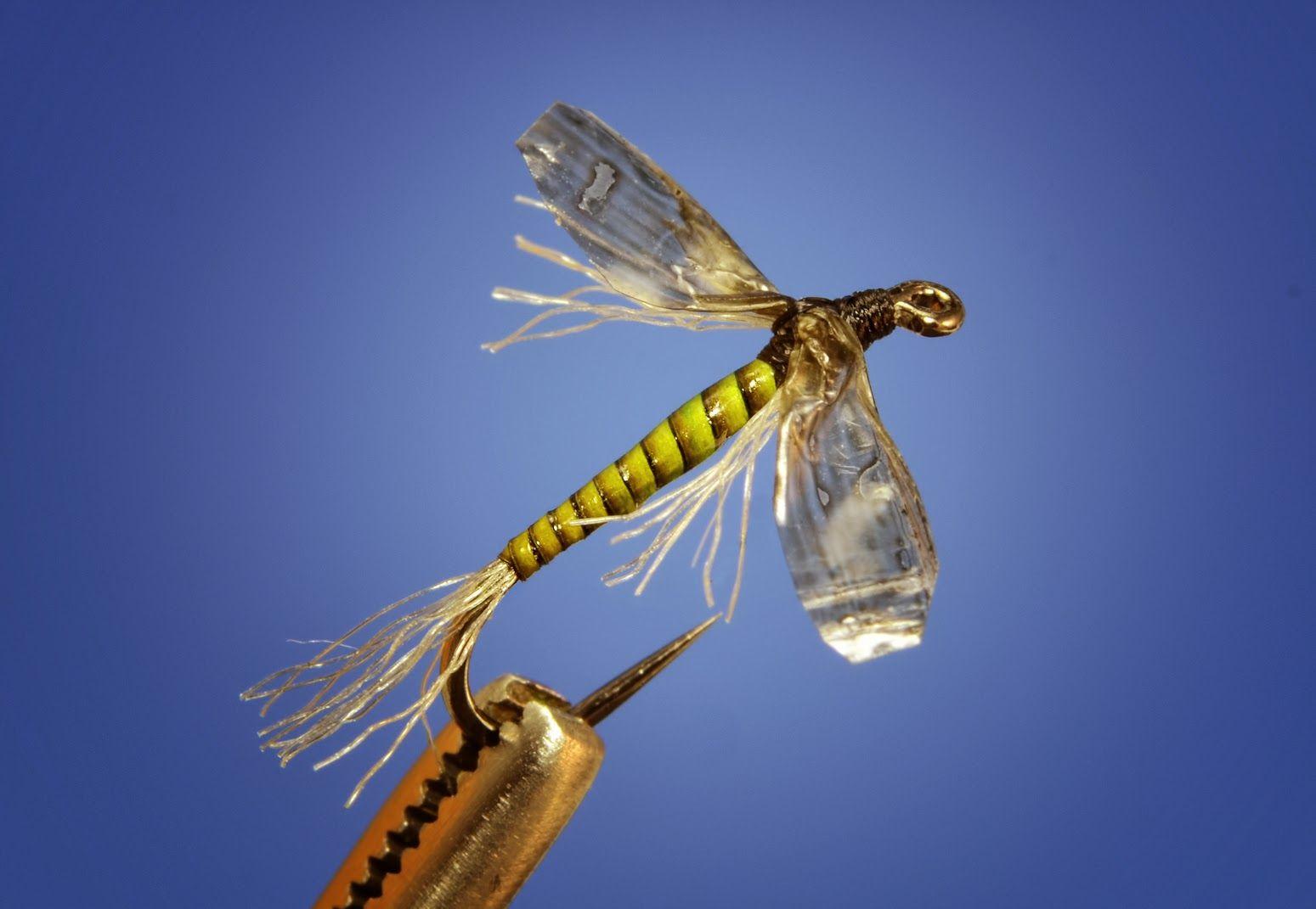 Midge Fly Patterns Amazing Inspiration