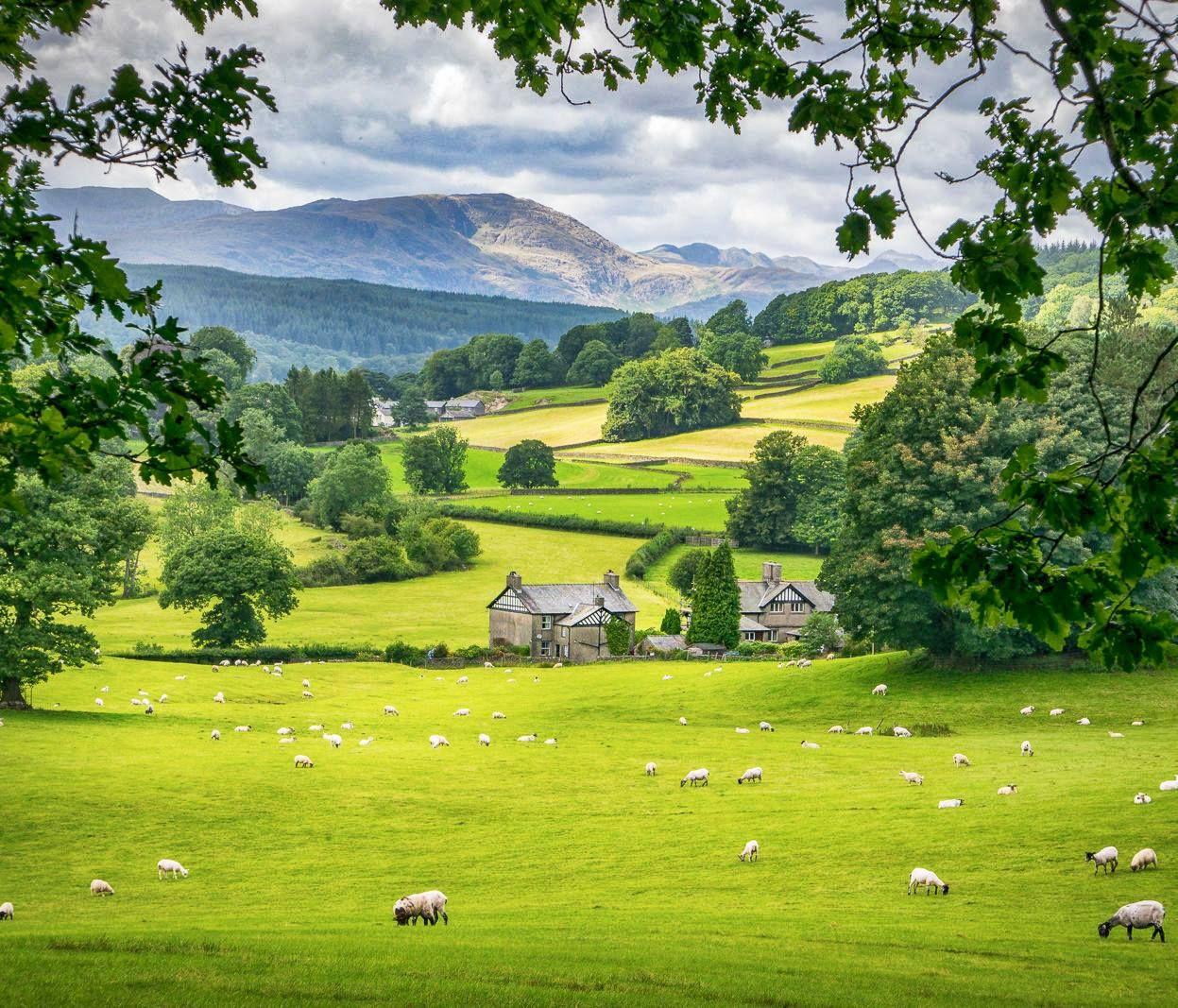 The Lake District Lake Landscape Landscape Lake District