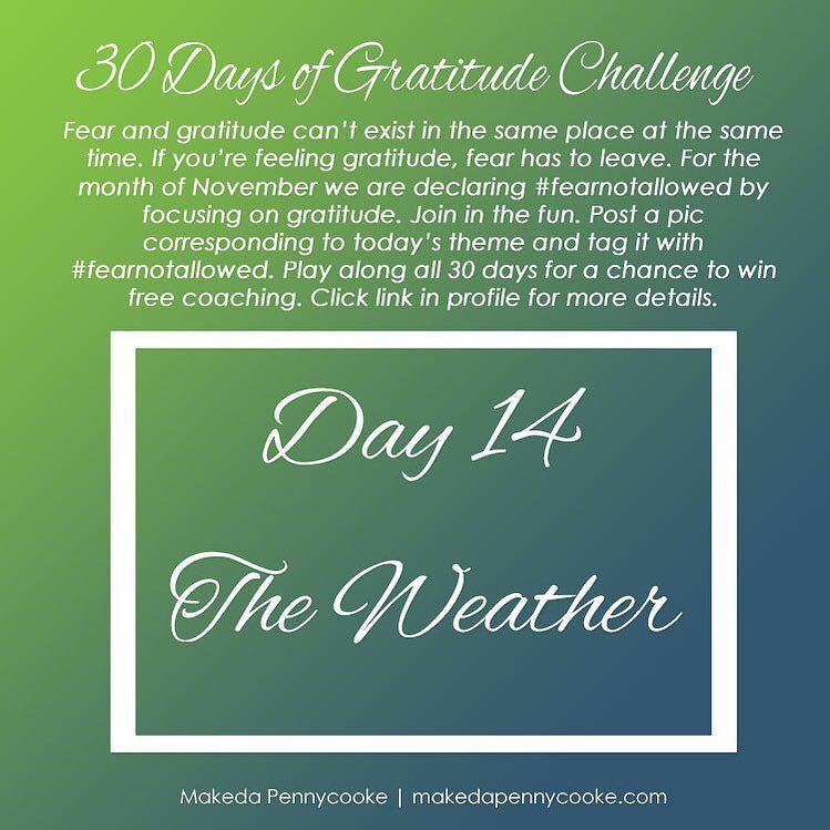 {Gratitude Challenge Day 14} Sunny or rainy hot or cold there is something to be grateful for in todays weather. Post a pic and tell us what youre loving about the weather today.  Remember to tag your pic with #fearnotallowed and label them Gratitude Challenge Day 14 in the caption so I can easily find them. At the end of the week Ill be pulling some of my favorites to be featured. Happy posting.  Its not too late to join in on the fun. See my profile for all previous prompts if you want to…