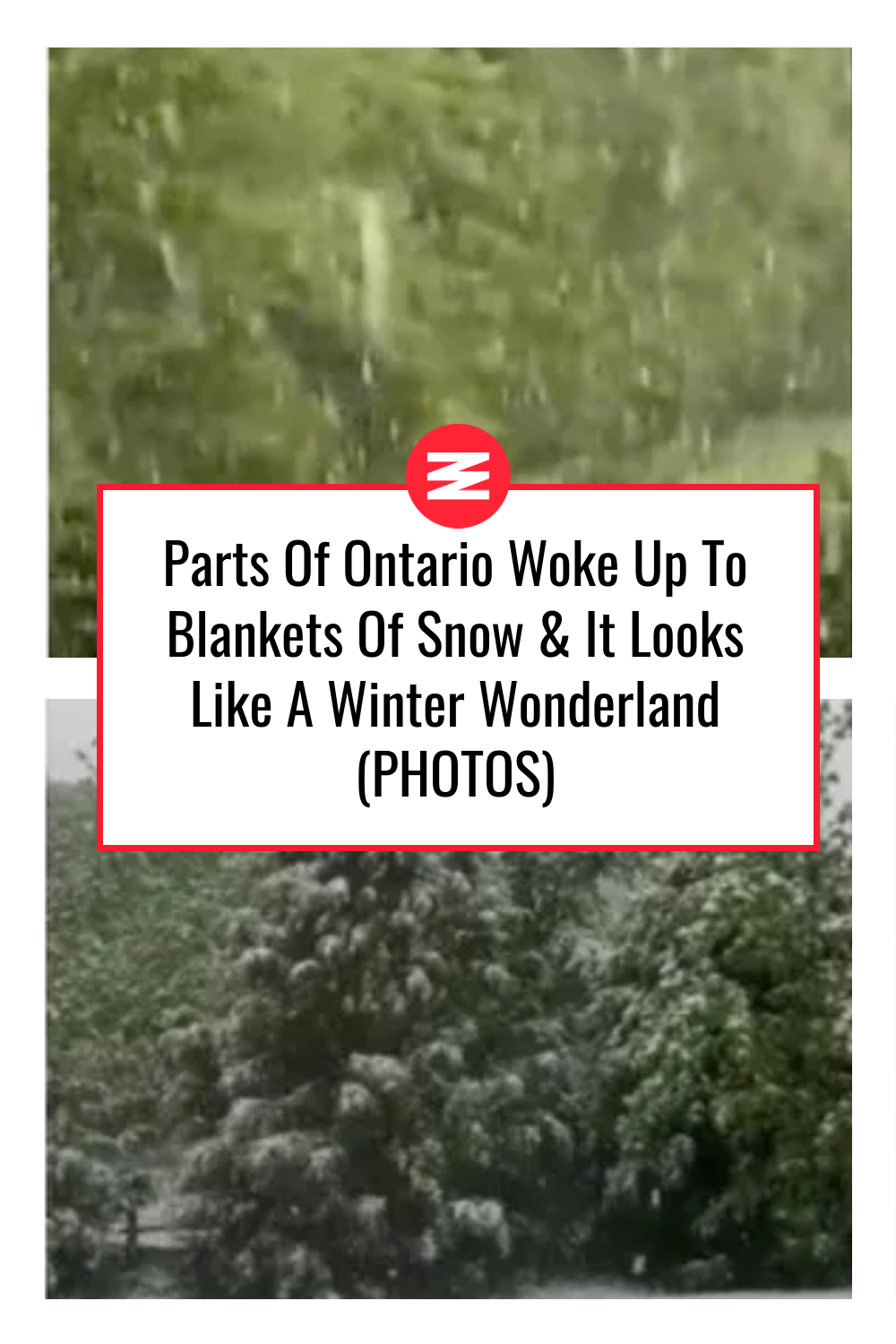 Parts Of Ontario Woke Up To Blankets Of Snow It Looks Like A Winter Wonderland Photos In 2021