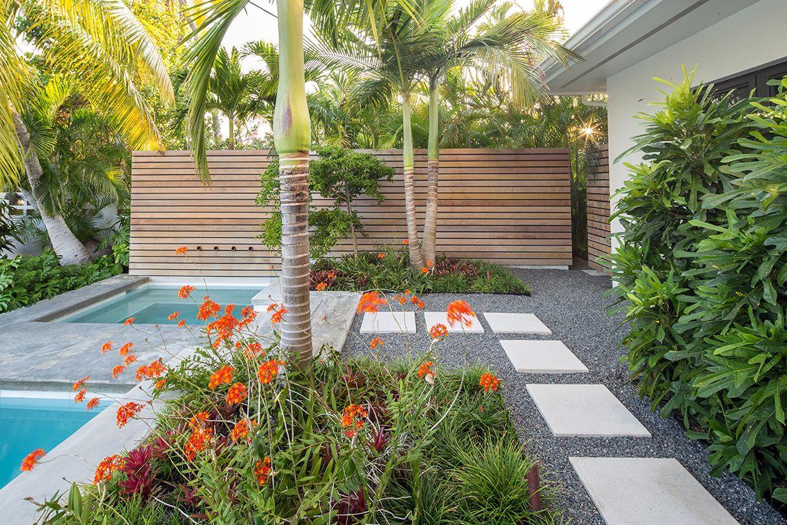 Craig Reynolds Landscape Architecture Tropical Landscaping Pool Landscape Design Modern Landscaping