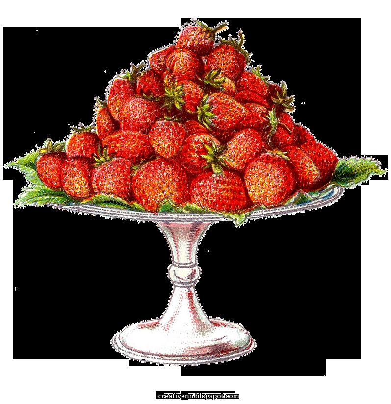 Картинки старинные ягоды. Клипарты ягоды. (с изображениями ...