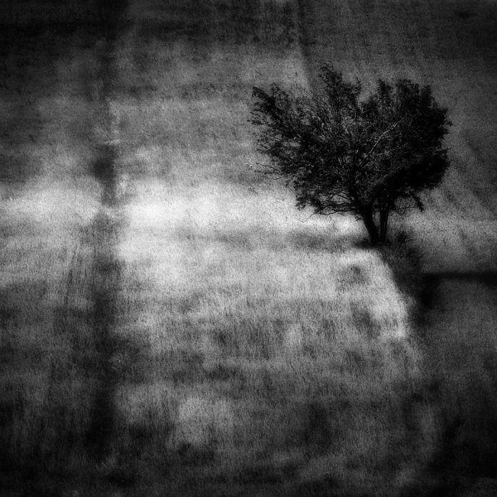 Grain Noise, Artwork by Tomasz Grzyb