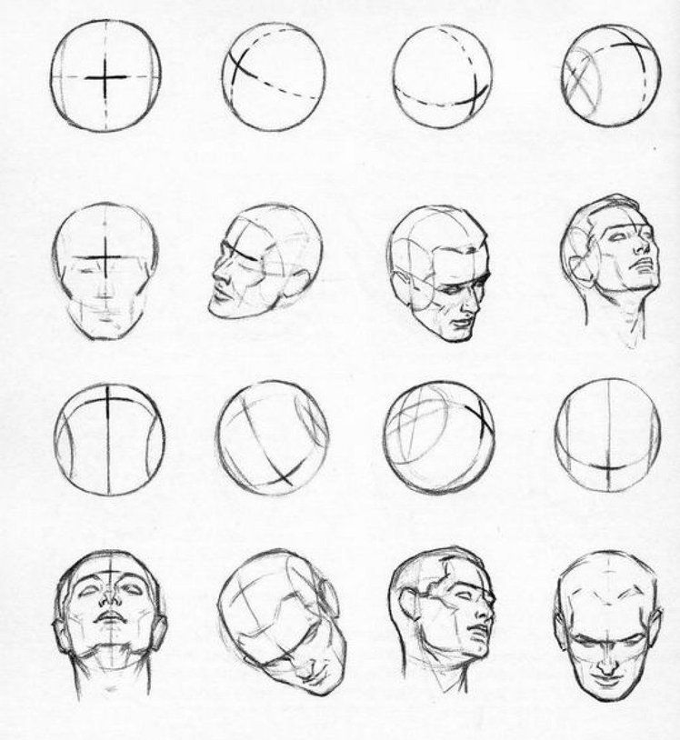 Andrew Loomis Head Drawing Heads Drawing The Human Head Human