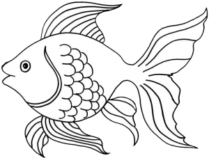 999 Fish Clipart Black And White Free Download Cloud Clipart Fish Coloring Page Fish Drawings Animal Coloring Pages
