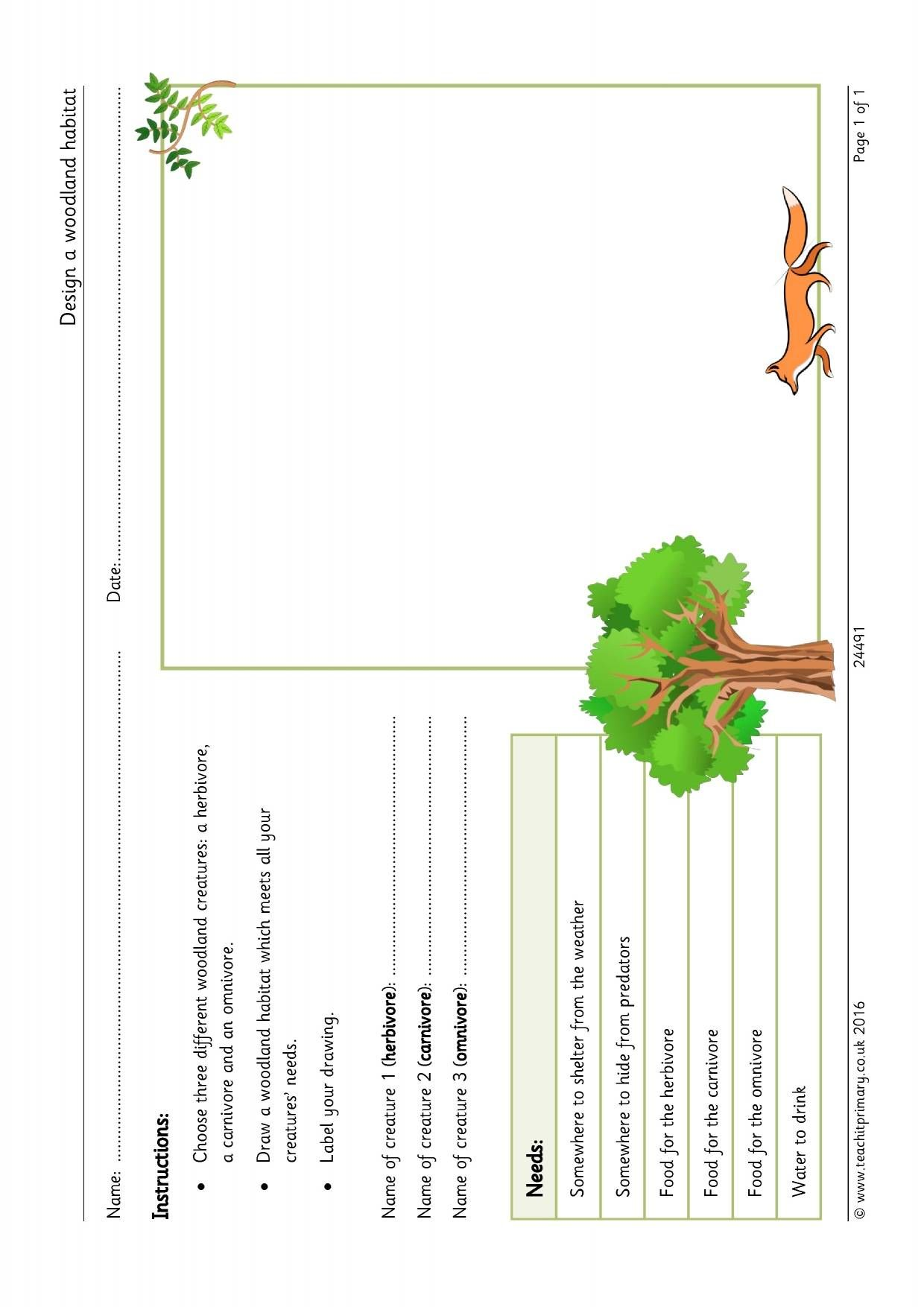 Design A Woodland Habitat