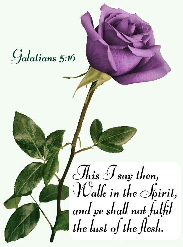 Galatians 5:16 KJV   heART   Pinterest   Oraciones católicas ...