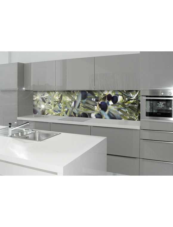 Küchenrückwand - Spritzschutz »profix«, Olivenbaum, 220x60 cm - Küchenrückwand Glas Beleuchtet