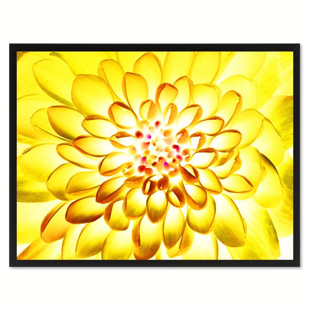 Yellow Chrysanthemum Flower Framed Canvas Print Home Dcor ...