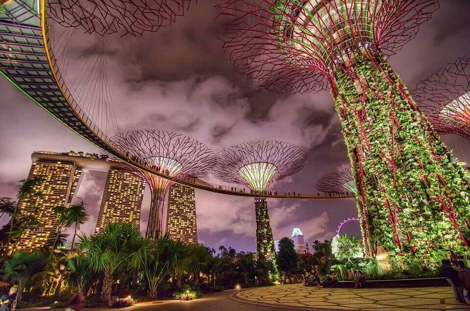 109102ccc5b4a71b8616b4f105270d6e - Singapore Flyer And Gardens By The Bay Double Domes Package