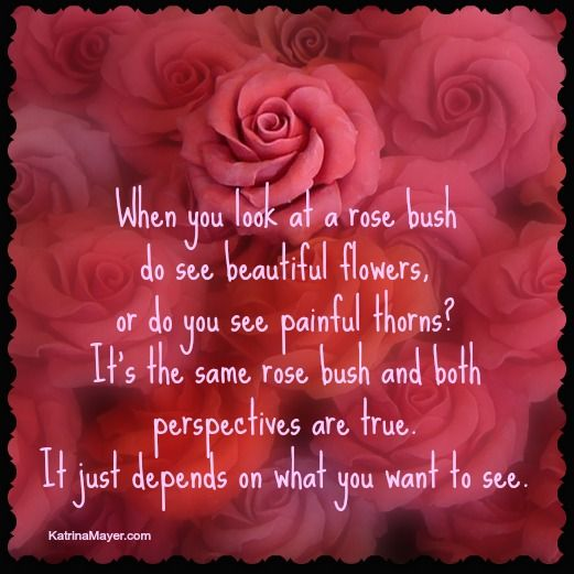do you see the roses or the thorns quotes about flowers