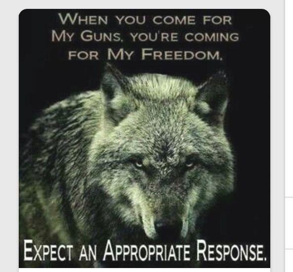 Pin On Politics Freedom And Gun Control