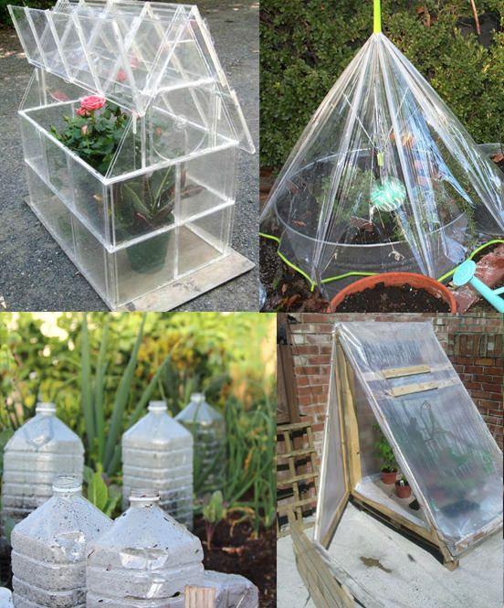 11 Creative Mini Greenhouse Diy Ideas You Must Look At Homemade