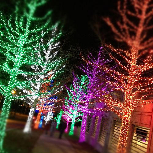 Awesome Christmas Lights in Fort Worth, Texas | Pinterest ...