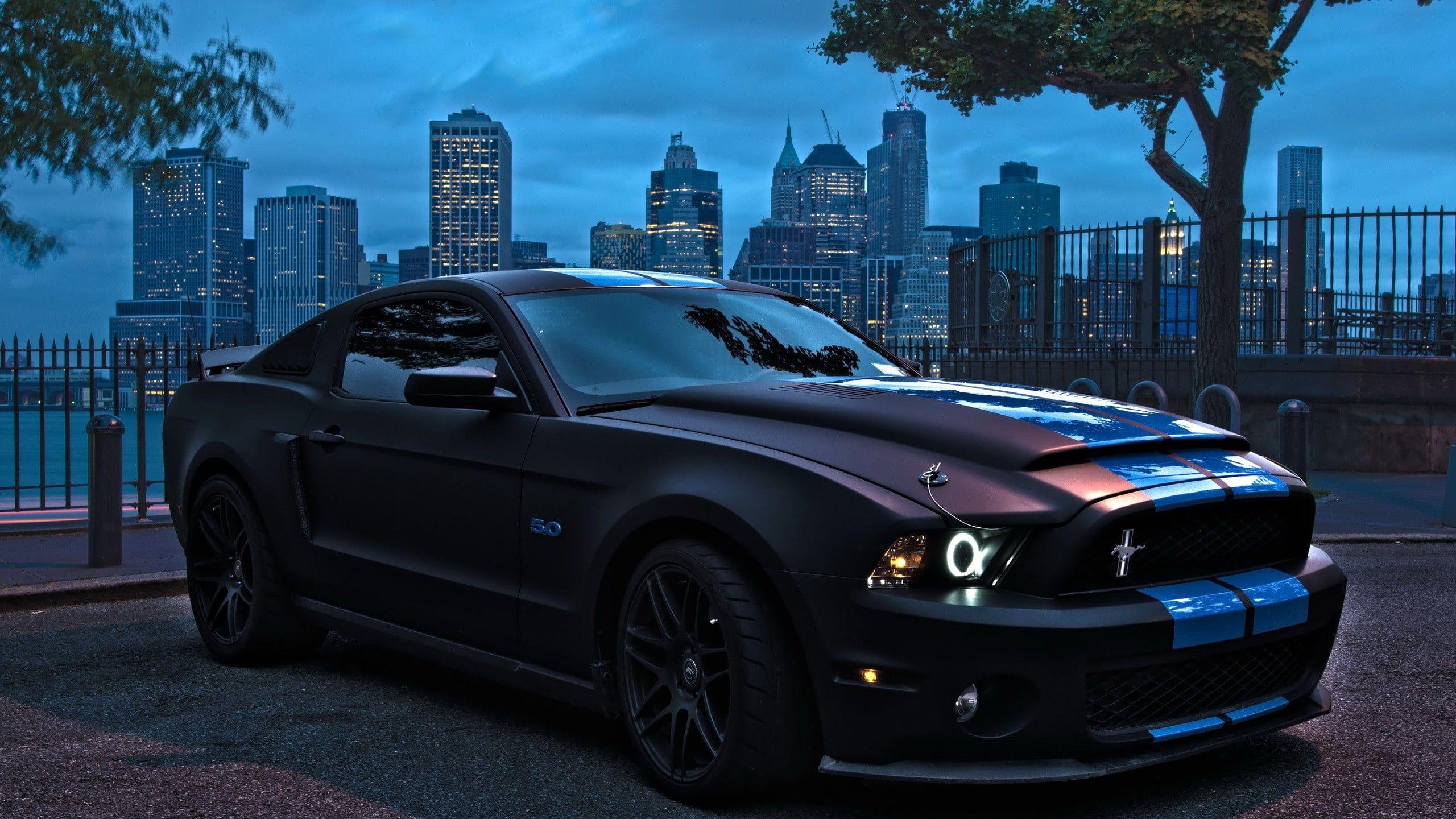 Black Ford Mustang Ford Mustang Car Muscle Cars 2k Wallpaper Hdwallpaper Desktop Tapeten Ideen Tapeten Auto Hintergrunde