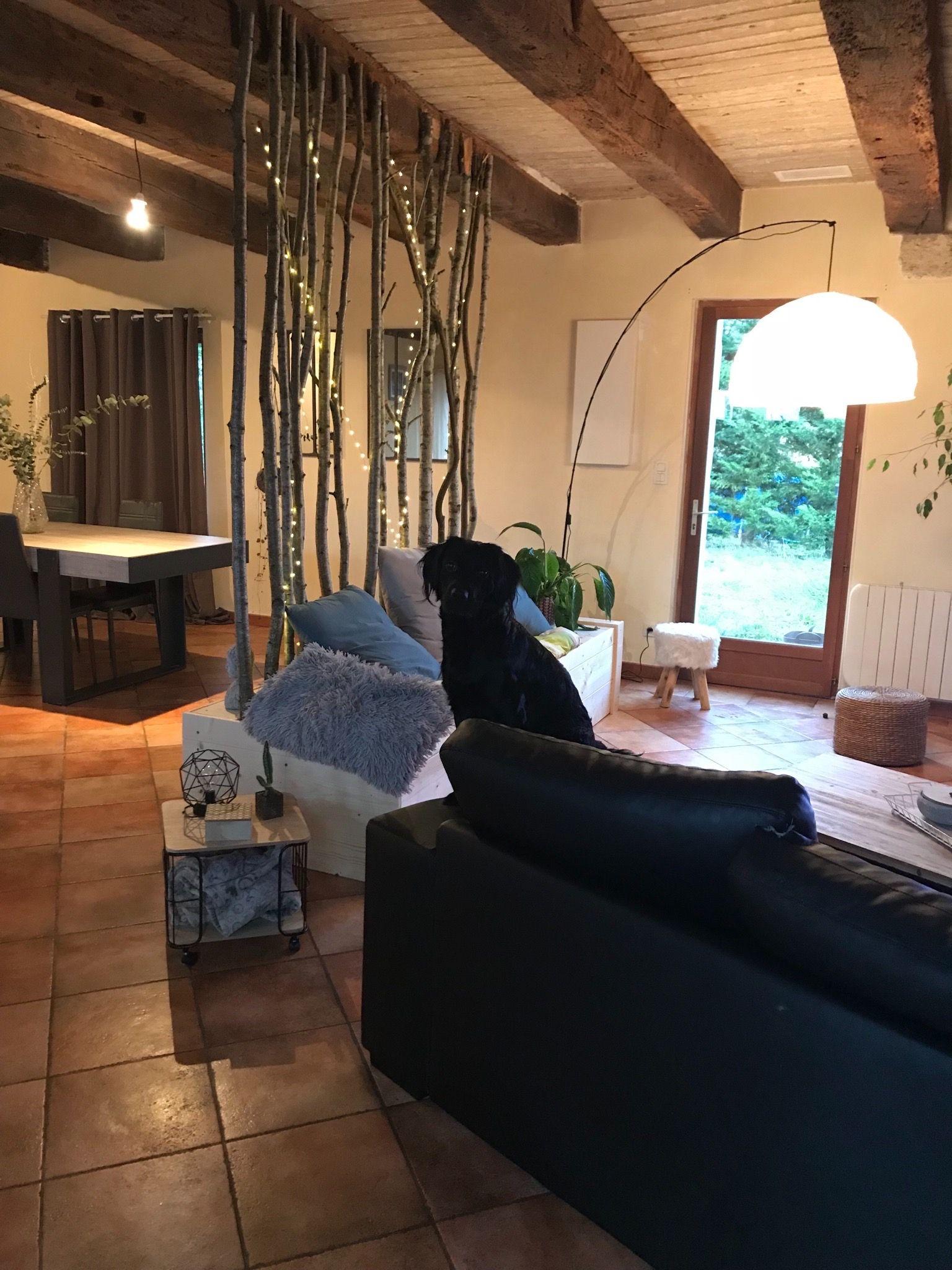 Agencement Bois Nature Construction Diy Design Renovation Architecture Salon Zen Lumiere Sofa Cosy Agencement Salon Diy Design Salon Zen