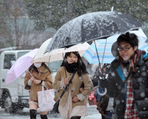 Tokyo Snowy Day 2