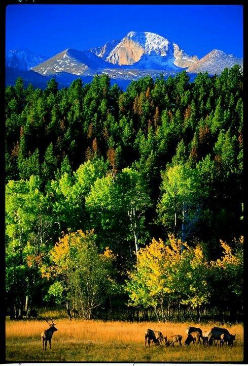 Longs Peak,Co