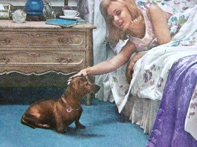 1967 Cute Dachshund Visits Lady in Nightgown in Bedroom Bigelow Carpet Print Ad | eBay