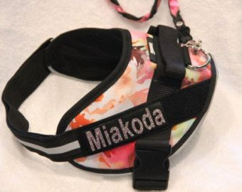 Custom dog agility harnesses are now available at Mighty Mite Dog Gear!