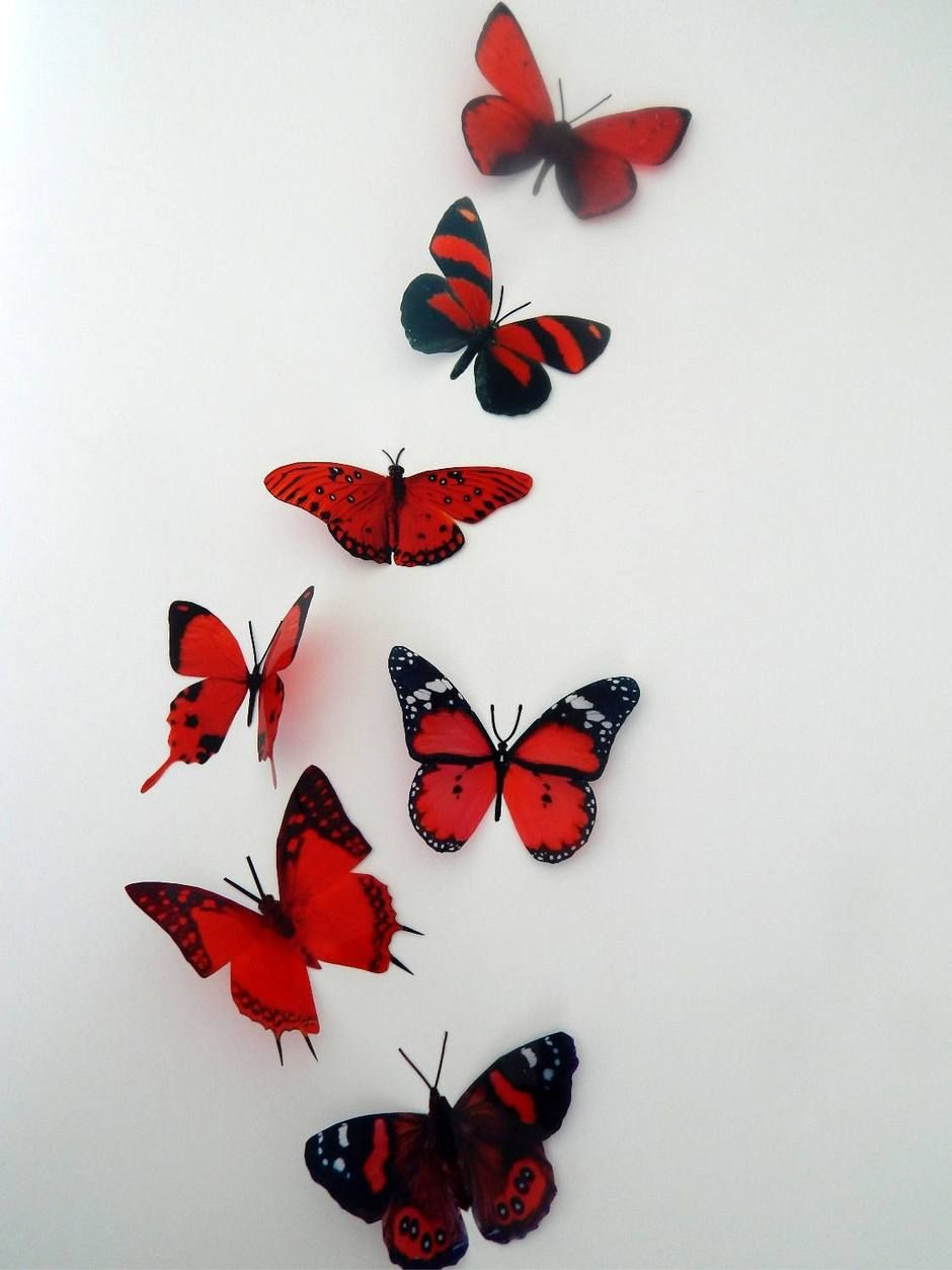 Photo of 3d butterflies the Red collection, butterfly decor for the wall,conservatory, home,bedroom, lounge,window decorations,vase, red butterflies