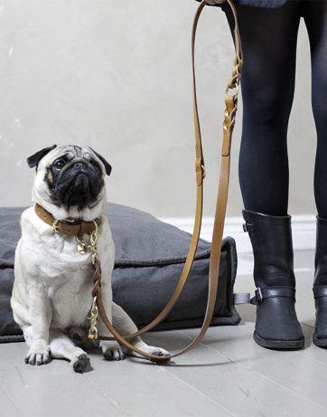 Cloud 7 Hyde Park Braided Dog Collar & Leash   Artilleriet   Inredning Göteborg