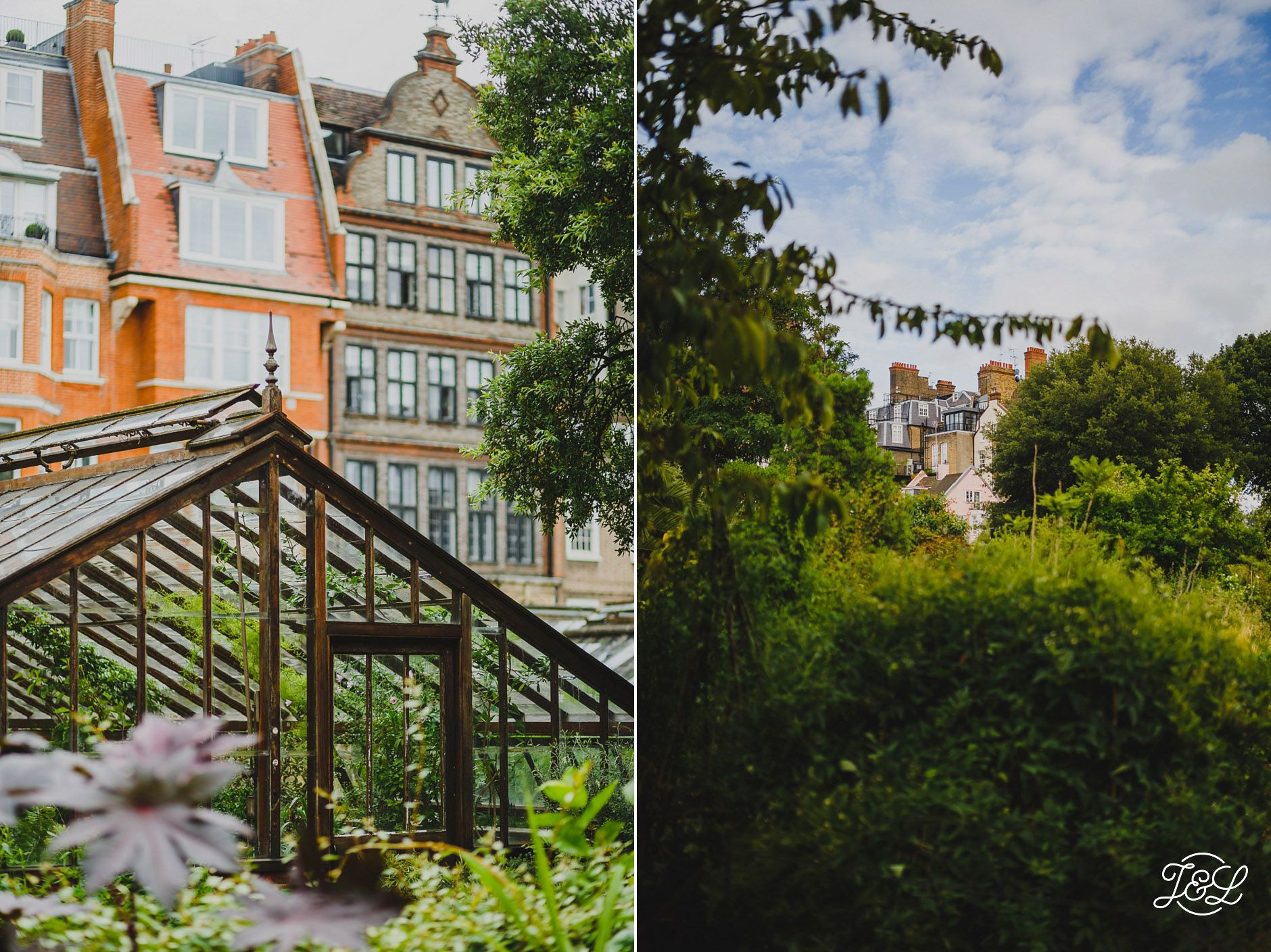 Chelsea physic garden wonderful oasis in this