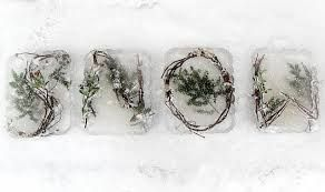 Image result for icy branch chandelier