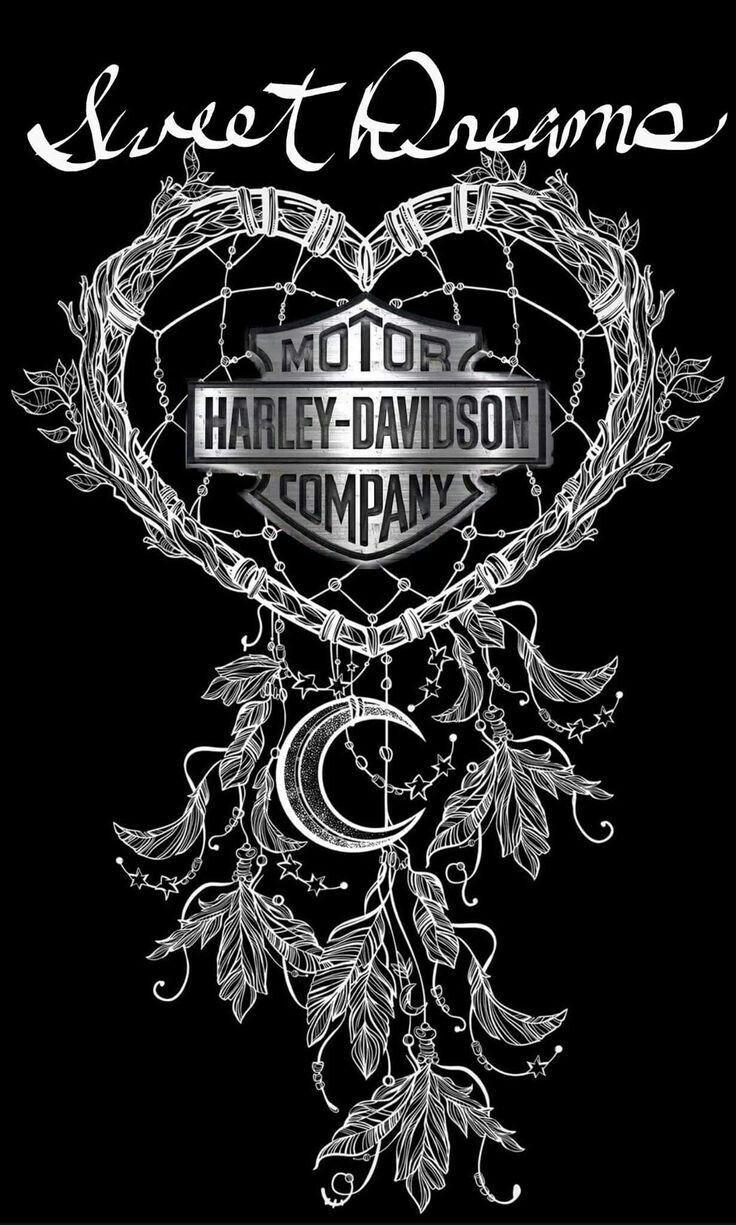 Harley Davidson Quotes Pindebra Dolge On Harley Davidson  Pinterest  Harley