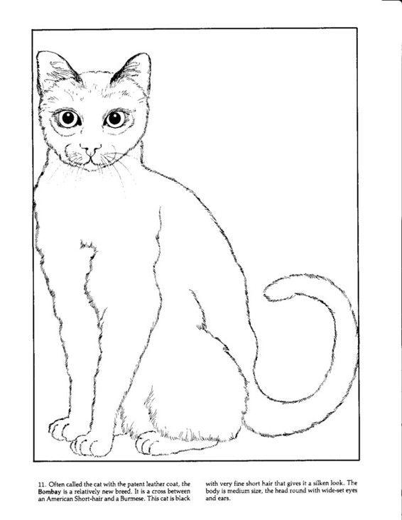 Pin By Laveda Allison On Coloriage Plus Vieux 2 Cat Coloring Page Coloring Pages Abc Coloring Pages
