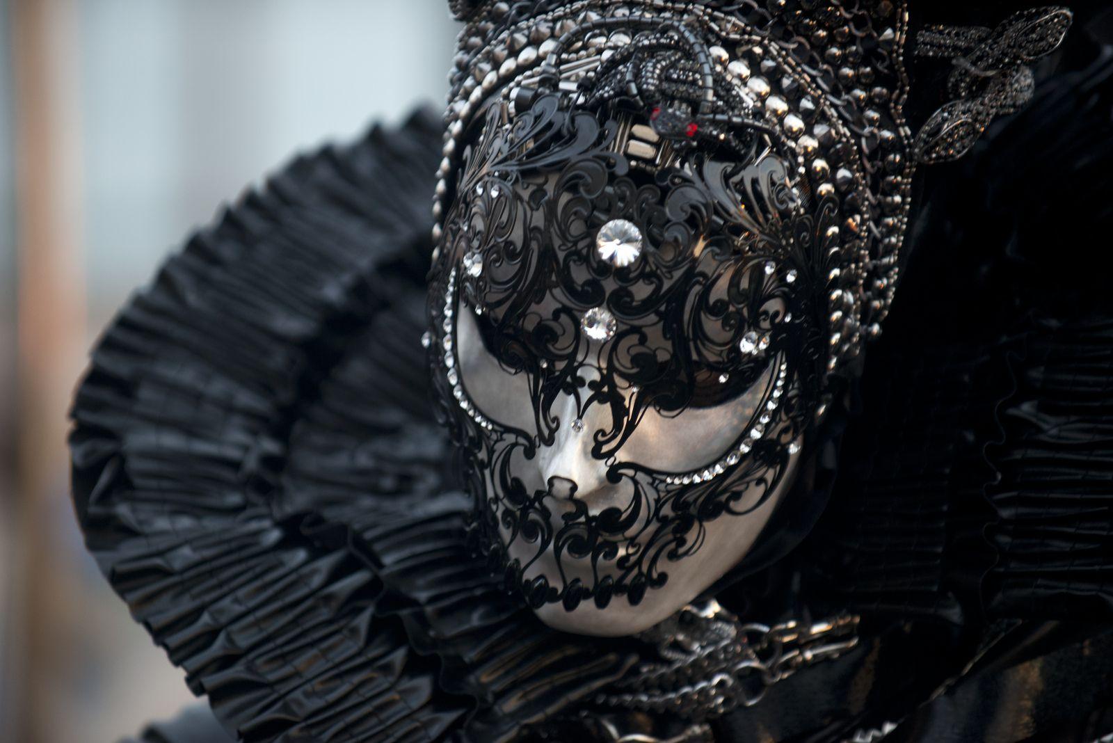 Carnevale di Venezia 2013 |