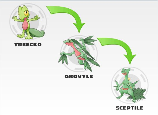 Treecko evolution | Cr...