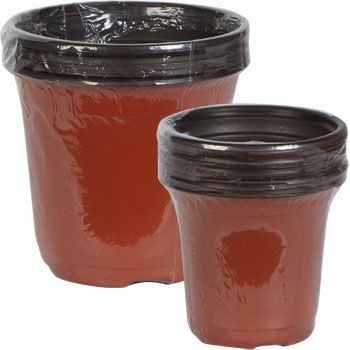 Small Plant Starter Pots, Assorted Sizes, dollartree.com